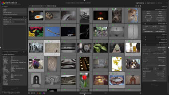 Darktable Photo Manager