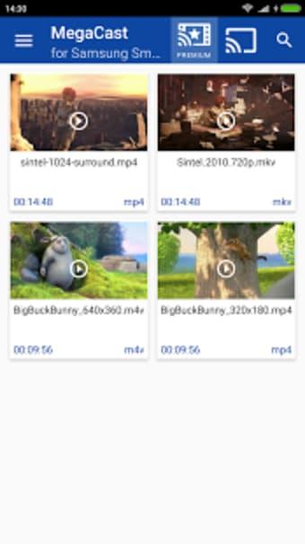 MegaCast Samsung Smart TV