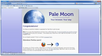 Download Pale Moon 28 5 2 for Windows - Filehippo com