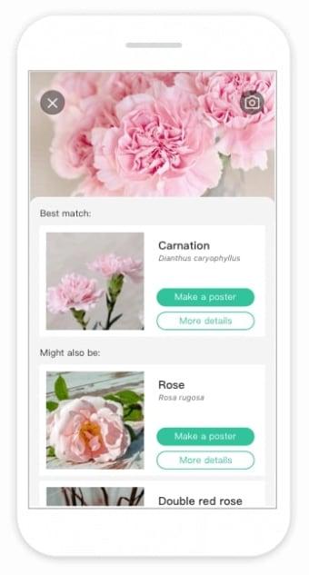 PictureThis - Flower Plant Identification